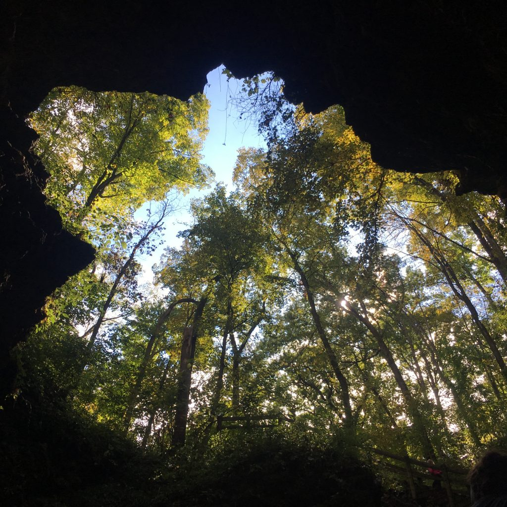 From underneath the Maquoketa Caves.