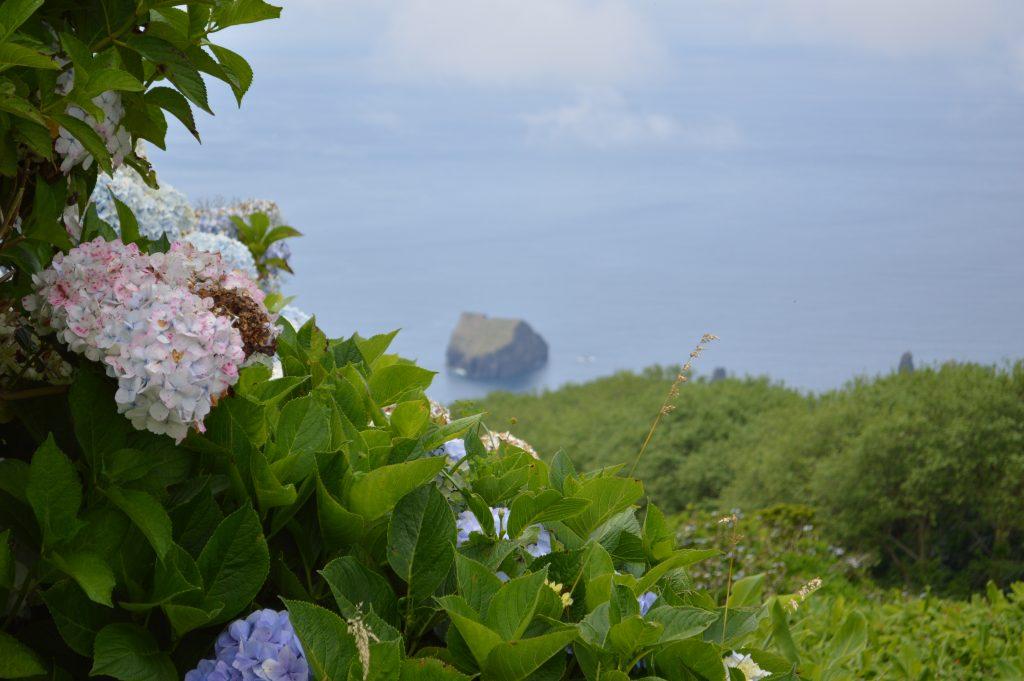 The Azores|Ponta Delgada| Saõ MIguel